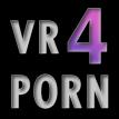 virtualreality4porn Logo